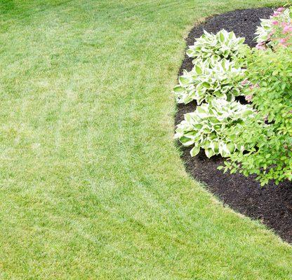 garden care Brisbane