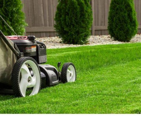 brisbane lawn mowing being done