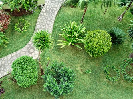 grass cutting brisbane